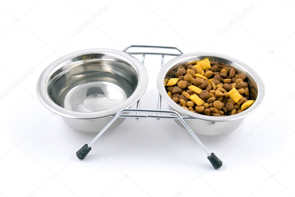 Bowl with cat food isolated on white background — Stock Photo #8386280