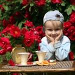 Summer tea in a garden — Stock Photo #8399729