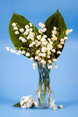 Lily of the valley in a transparent vase. — Stock Photo