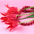 Stock Photo: Red tulips and beads on a pink background.