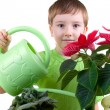 Boy waters flowers from a watering can — Stock Photo