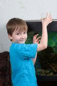 Boy feeds fishes — Stock Photo