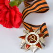 Order of the Patriotic War in St. George's Ribbon - Stock Photo