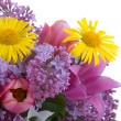 Bouquet of spring flowers - Stock Photo