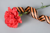 Red carnation and St. George's Ribbon — Stock Photo