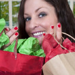 Woman Shopping Bags — Stock Photo #10228110