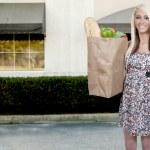 Woman Shopping Bags — Stock Photo #8817025