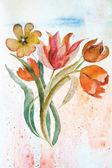 Fondo con las flores de los tulipanes — Foto de Stock