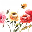 Stock Photo: Beautiful Roses flowers