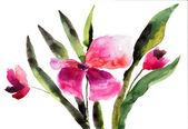 Vackra rosa blommor — Stockfoto