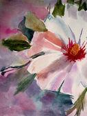 Spring white flower — Stock Photo