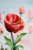Poppy flower watercolor — Stock Photo
