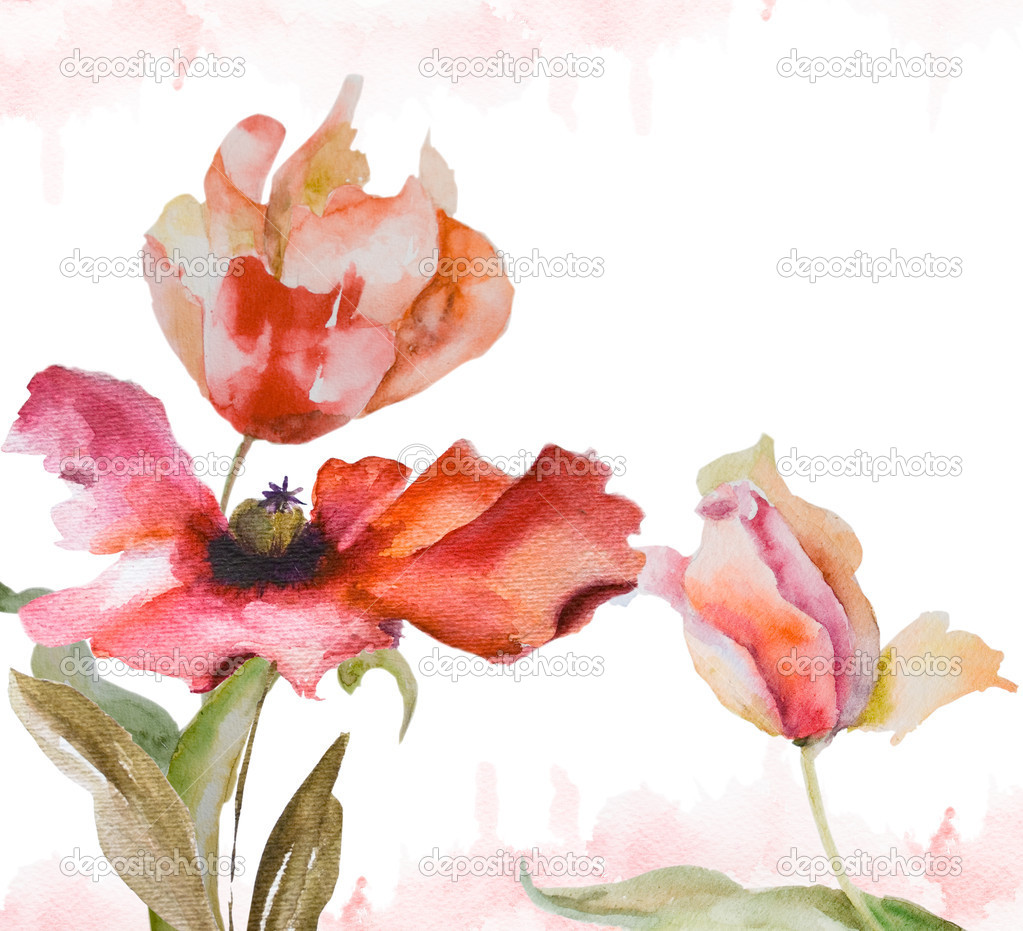 Watercolor background with tulips and poppy flowers — Stock Photo #9691842
