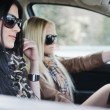 Two girls in a car — Stock Photo #10418767