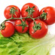 Tomato isolated with lettuce - Stock Photo
