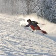 Skier in nature - Stockfoto