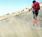 Nordic Walking at mountains, hiking woman in grass — Stock Photo