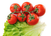 Tomato isolated with lettuce — Stock Photo