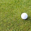 Golf ball on grass field — Stock fotografie