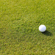 Golf ball on grass field — Stock Photo #10420922