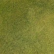 Artificial grass background — Lizenzfreies Foto