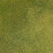 Artificial grass background — Photo
