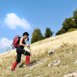 Walking uphill woman trekking and hiking mountaineering - Stock Photo