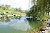 Small lake at golf field — Stock Photo