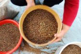 Woman holding bowl of buckwheat — Stock Photo