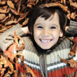 A little child playing in the autumn leaves — Stockfoto