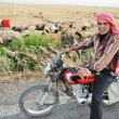 Senior shepherd on bike — Stock Photo