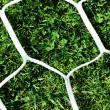 White football net on green grass background - Stock Photo