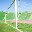 Stock Photo: Goal net and white line in a soccer field on stadium