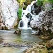 Mountain River — Stock Photo #8846008