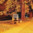 Foto Stock: Fall scene, park, trees, alley