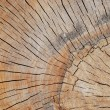 Very interesting wood pattern, shape, background — Zdjęcie stockowe