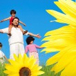 Happy childhool on green meadow, behind sunflower — Stock Photo