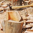 Wood prepared with axe for the winter — Stock Photo