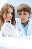 女性和男性的科学家在实验室中用试管 — 图库照片