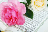 Rose put on holy Islam book Koran — Stock Photo