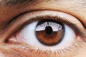 Closeup of human eye, macro mode — Stock Photo