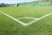 Soccer field with beautiful green grass in stadium — Stock Photo