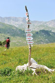 Signs in mountains — Stock Photo