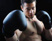 The Perfect male body - Awesome boxing fighter — Stock Photo