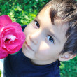 Very cute child with a pink rose in his hand - Stock Photo