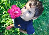 Très mignon petit garçon avec closeup outdoor, rose — Photo