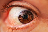 Human eye, macro — Stock Photo