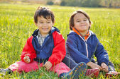 Two brother on meadow — Stock Photo