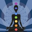 Chakras — Stock Photo #9235345