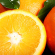 Close up of fresh orange fruit — Stock Photo